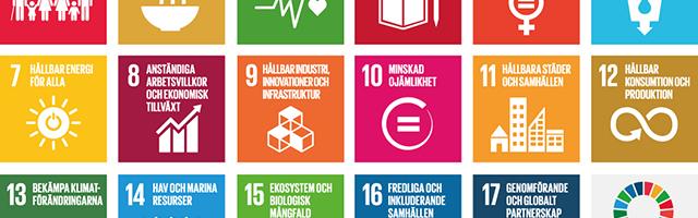 Globala hållbarhetsmålen
